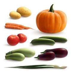 Vegetables realistic set vector