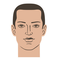 man hairstyle head vector image