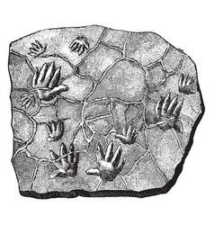 Chirotherium tracks vintage vector