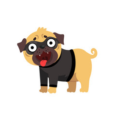 Funny pug dog character dressed as robber funny vector