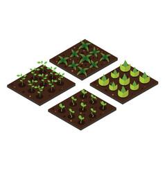garden in spring isometric icon set vector image