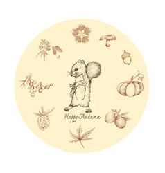 Hand drawn of squirrel with autumn plants vector