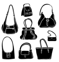 handbags set fashion accessory women bag vector image