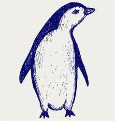 Penguin sketch vector image