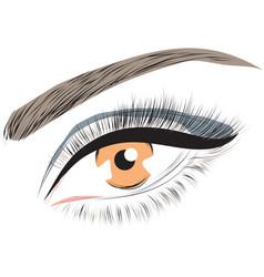 hazel brown female closed female eye vector image