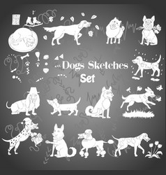 Funny dogs sketches vector
