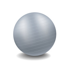 Gym ball in grey design with shadow vector