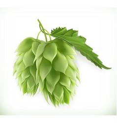Hop plant 3d icon vector image vector image