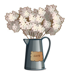 metal kettle with lush white flowers vector image