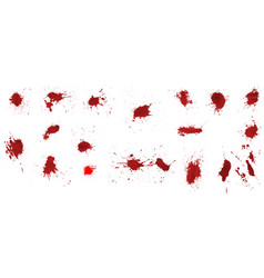 realistic spots of red paint or blood vector image