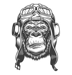 Serious gorilla in monochrome style vector