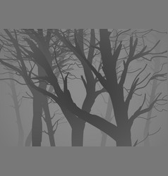 Silhouette of a misty dark woods vector