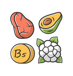 Vitamin b5 color icon meat avocado vector