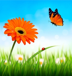 Spring background orange beautiful flower and a vector