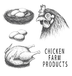 Set of monochrome chicken farm products vector image