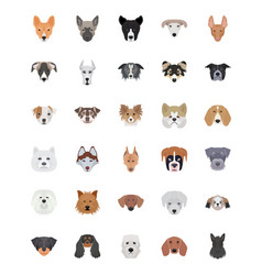 Breeds of dogs flat icons set vector