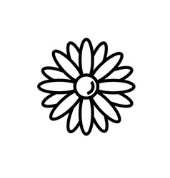 flowers petal icon vector image