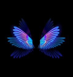 Glowing hummingbird wings vector