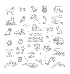 line arctic wildlife concept with different north vector image