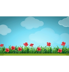 Scene with red flowers in the field vector image