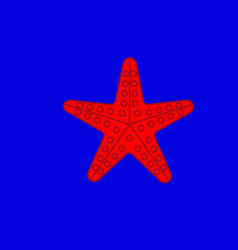 sea star on the blue background vector image
