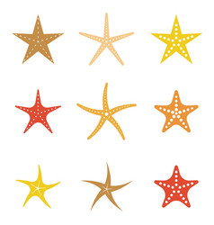 set of starfish icon flat design vector image