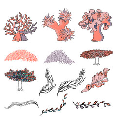 Set of various seaweeds and corals icons vector