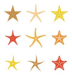 Set starfish icon flat design vector