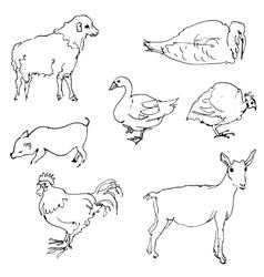 Sketch of farm animals vector