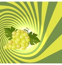 Striped spiral grape patisserie background Grape vector image