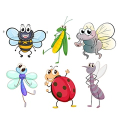 Different insects vector image