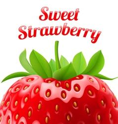 Poster sweet strawberries vector image