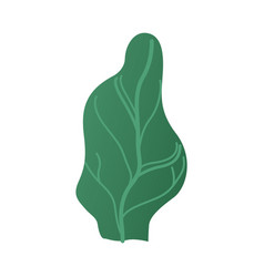 abstract green tree plant cartoon icon vector image
