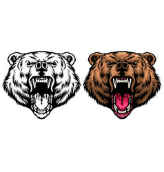 angry grizzly head roaring vector image