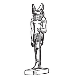 Anubus is an egyptian deity vintage engraving vector