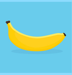 Banana on blue background vector