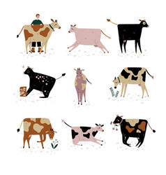 Cows of different breeds set cattle breeding vector