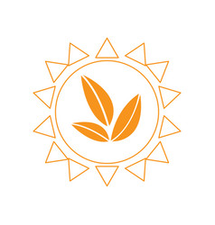 leaves in an abstract sun vector image