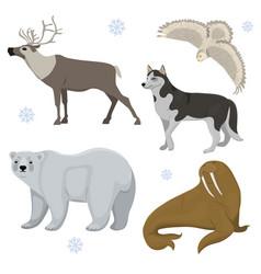 Set polar animals husky bear owl deer vector