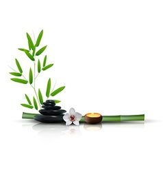 Stone flower and bamboo isolated background vector