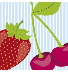 Strawberry and cherry on blue background with whit vector
