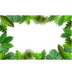 tropical jungle background with palm trees leaves vector image