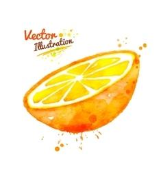 Watercolor half of an orange vector image