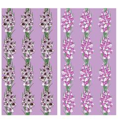 seamless pattern flowers gladiolus purple vector image vector image