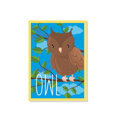 cute owl with woodland bird vector image
