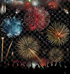 Holiday Celebration with fireworks show at night vector image