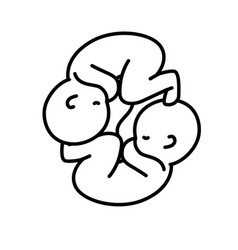 line nice babies twins with umbilical cord vector image