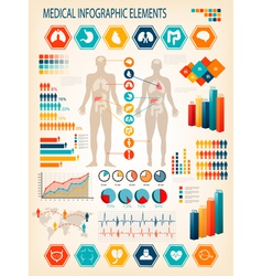 Medical infographics elements human body vector