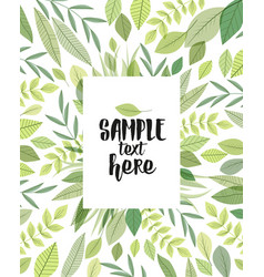 decoration branches with leaves vector image vector image
