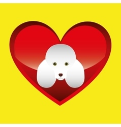 Poodle dog face design icon vector